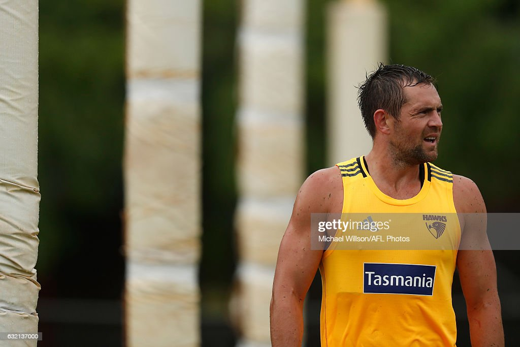 Luke Hodge of the Hawks looks on during a Hawthorn Hawks AFL press conference and training session at Waverley Park on January 20, 2017 in Melbourne, Australia.