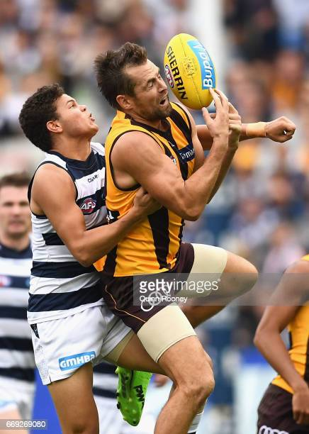 Luke Hodge of the Hawks marks infront of Brandan Parfitt of the Cats during the round four AFL match between the Hawthorn Hawks and the Geelong Cats...