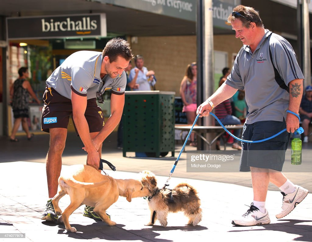 Luke Hodge tries to hold his Guide Dog back from another dog during the Guide Dogs Tasmania 'Take the Lead' campaign launch during the Hawthorn Hawks AFL Community Camp on February 22, 2014 in Launceston, Australia.