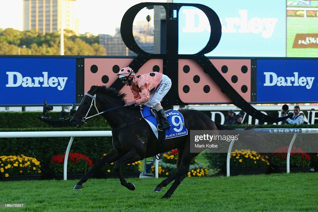 Luke Nolan rides 'Black Caviar' to win race 9 the Darley TJ Smith Stakes on Australian Derby Day at Royal Randwick Racecourse on April 13, 2013 in Sydney, Australia.