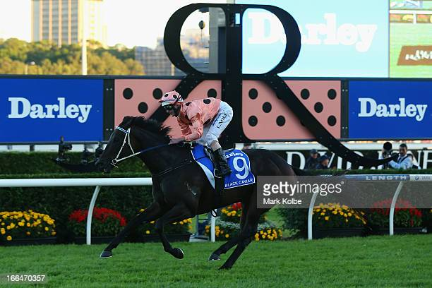 Luke Nolan rides 'Black Caviar' to win race 9 the Darley TJ Smith Stakes on Australian Derby Day at Royal Randwick Racecourse on April 13 2013 in...