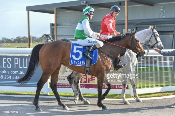 Luke Nolen returns to the mounting yard on Doc's Hero after winning the XXXX Gold BM70 Handicap at Racingcom Park Synthetic Racecourse on September...