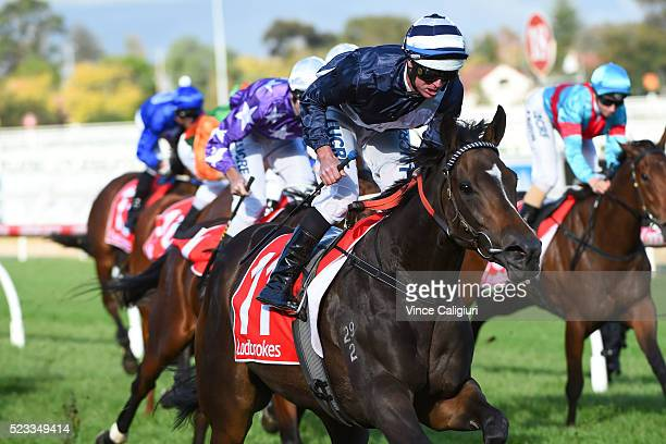 Luke Nolen riding Abbey Marie wins Race 6 during Melbourne Racing at Caulfield Racecourse on April 23 2016 in Melbourne Australia