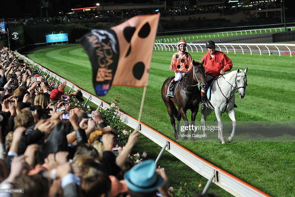 <a gi-track='captionPersonalityLinkClicked' href=/galleries/search?phrase=Luke+Nolen&family=editorial&specificpeople=2190756 ng-click='$event.stopPropagation()'>Luke Nolen</a> riding Black Caviar after winner her 24th straight win in the Hacer Group William Reid Stakes during Melbourne racing at Moonee Valley Racecourse on March 22, 2013 in Melbourne, Australia.