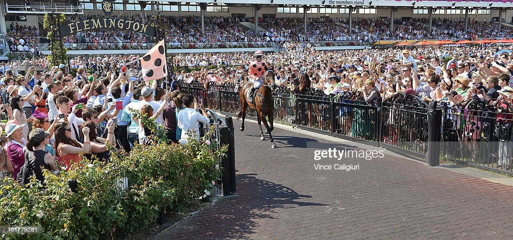 <a gi-track='captionPersonalityLinkClicked' href=/galleries/search?phrase=Luke+Nolen&family=editorial&specificpeople=2190756 ng-click='$event.stopPropagation()'>Luke Nolen</a> riding Black Caviar heads to the start before winning her 23rd consecutive race, the Black Caviar Lightning Stakes during Lightning Stakes Day at Flemington Racecourse on February 16, 2013 in Melbourne, Australia.