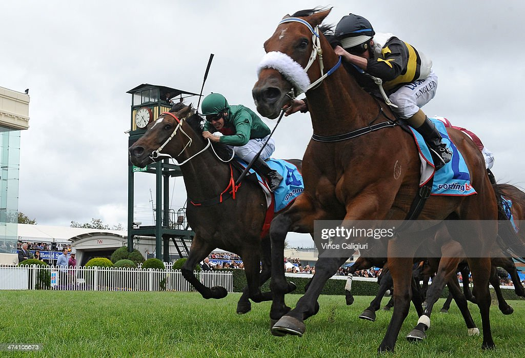 <a gi-track='captionPersonalityLinkClicked' href=/galleries/search?phrase=Luke+Nolen&family=editorial&specificpeople=2190756 ng-click='$event.stopPropagation()'>Luke Nolen</a> riding Moment of Change defeats Ryan Maloney riding Sertorius in Race 6, the Cathay Pacific Futurity Stakes during Blue Diamond Stakes Day at Caulfield Racecourse on February 22, 2014 in Melbourne, Australia.