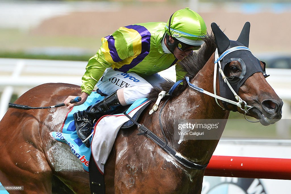 Luke Nolen riding Royal Haunt wins the TROA Supports National Jockey's Trust Manfred Stakes during National Jockey's Trust Race Day at Caulfield Racecourse on February 2, 2013 in Melbourne, Australia.