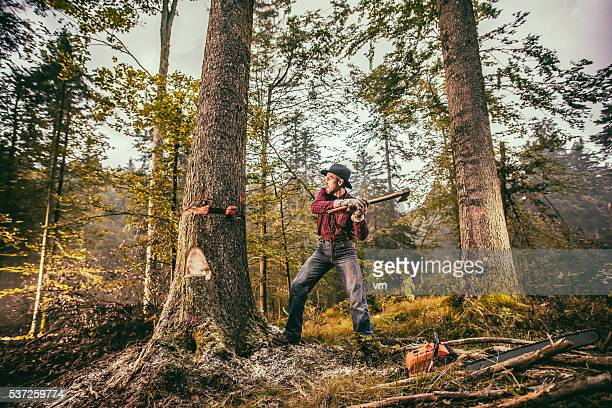 Holzfäller arbeiten