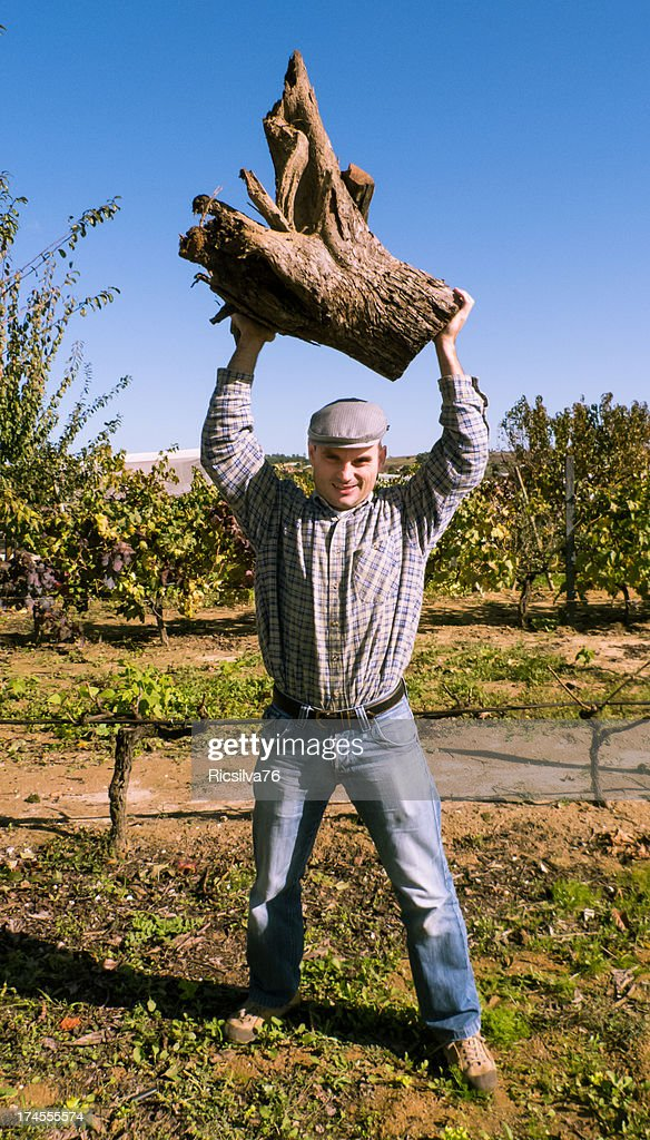 Lumberjack holding a wooden trunk in the air