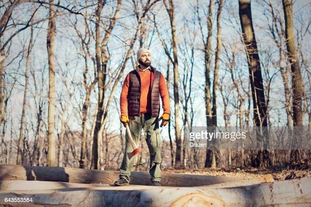 Lumberjack in woods with work tools - saw, ax, chainsaw, cutting trees