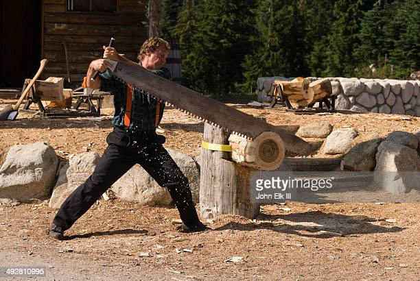Lumberjack log-sawing demonstration