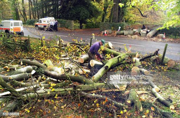 Lumberjack Russell Bownes clears a tree at the scene on the B4361 at Richards Castle near Tenbury Wells Herefordshire where a tree fell on a car...
