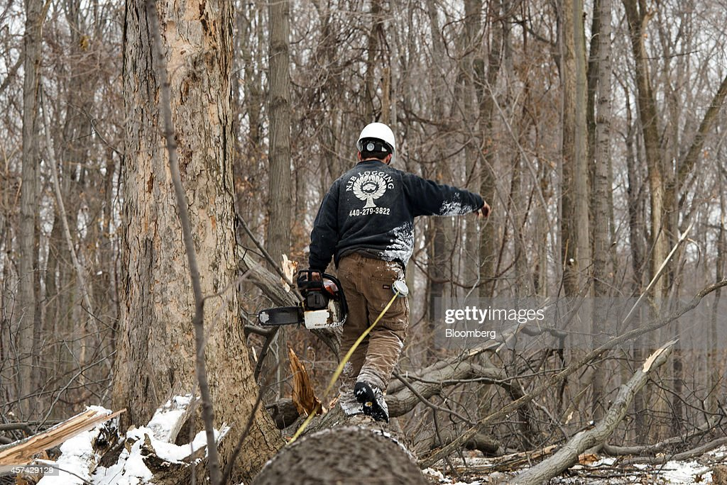 U s lumber production up 6 5 percent from 2012 getty images for How to calculate board feet in a tree