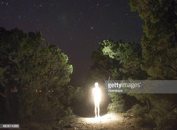 Luminosité silhouette de nuit