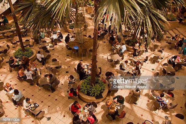 Lunchtime in the Mall