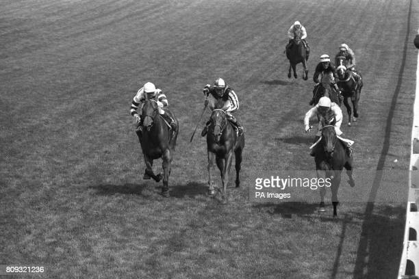 Lupe ridden by Geoff Lewis winning the Coronation Cup from Stintino ridden by A Barclay Third was Quayside ridden by Lester Piggott