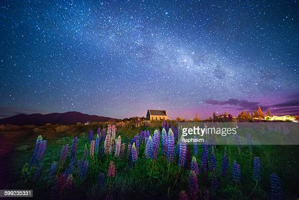 Lupines and church among milky way and aurora