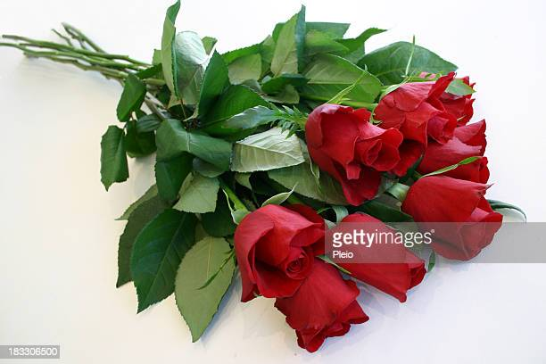 luscious leafy stems of red roses