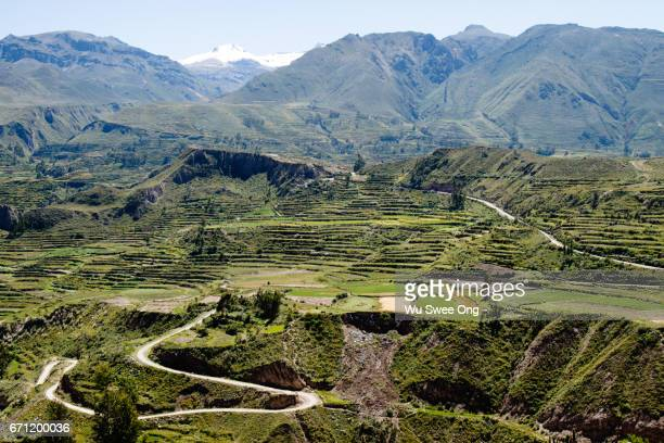 Lush Colca Canyon and Valley