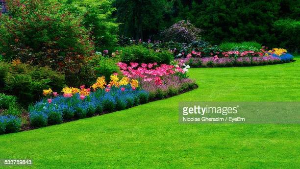 Lush Cultivated Park In Spring