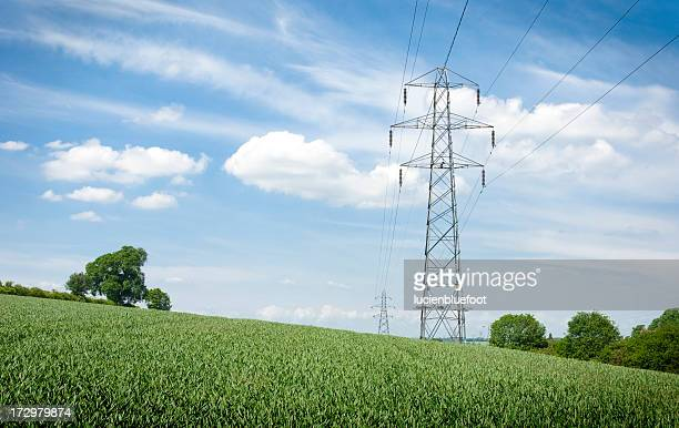 Lush Field with Electricity Pylons