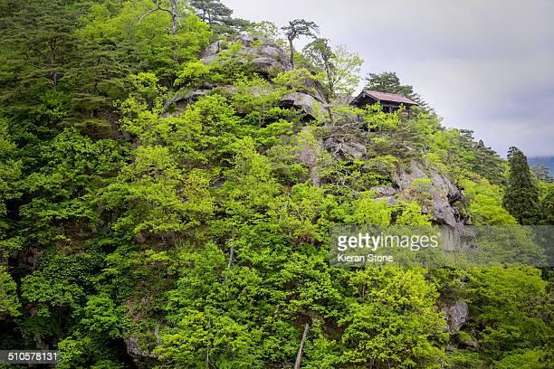 Lush green tress on a mountainside with a lone hut on top Yamadera Japan