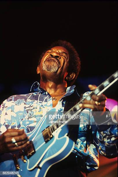 Luther Allison performs on stage at the King Biscuit Blues Festival in 1995 in Helena Arkansas United States