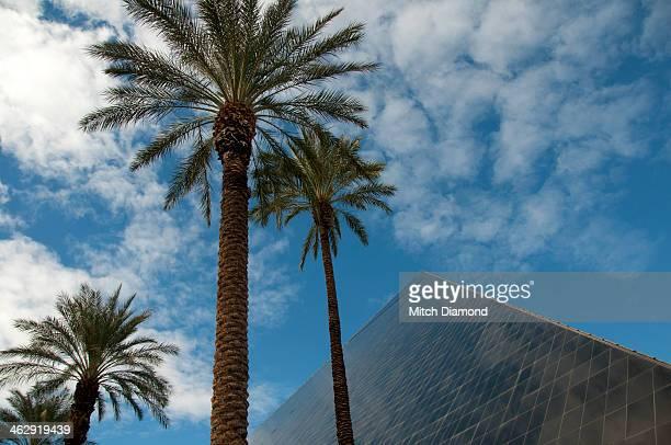 Luxor pyramid and palms