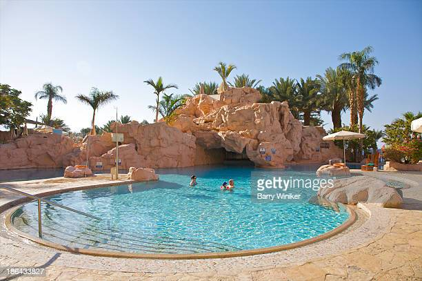 Luxurious pool with boulders and palms