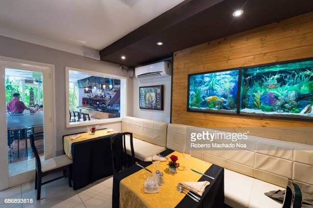 Luxurious sitting tables and decoration design in Salsa Suarez restaurant or 'paladar' Interior view of the famous private small business