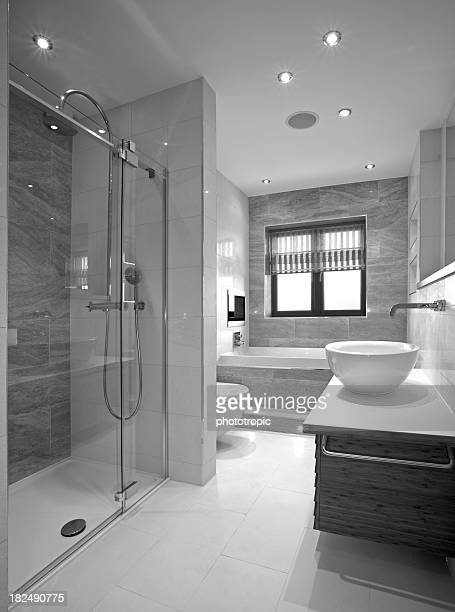 luxury bathroom in black and white