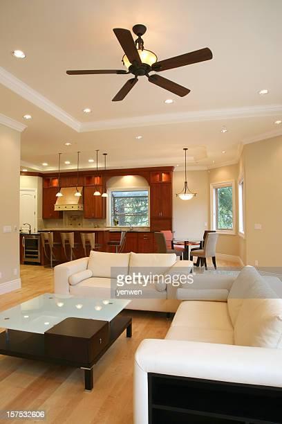 Luxury Family Room Interior