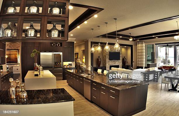 Luxury Home worth several million dollars modern kitchen and living area