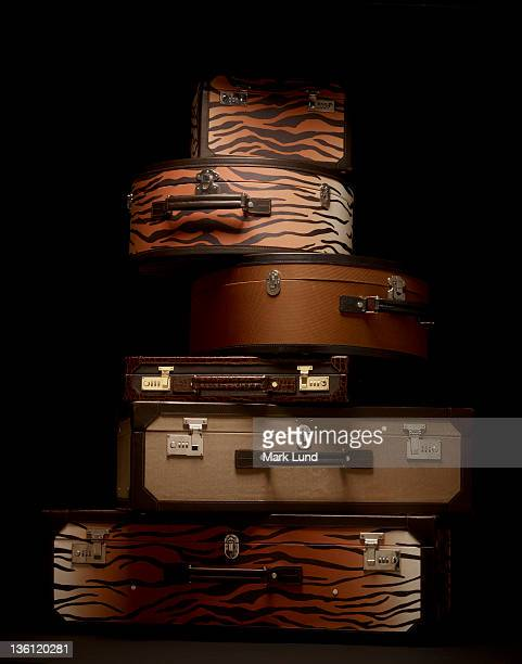 Luxury Luggage Stack