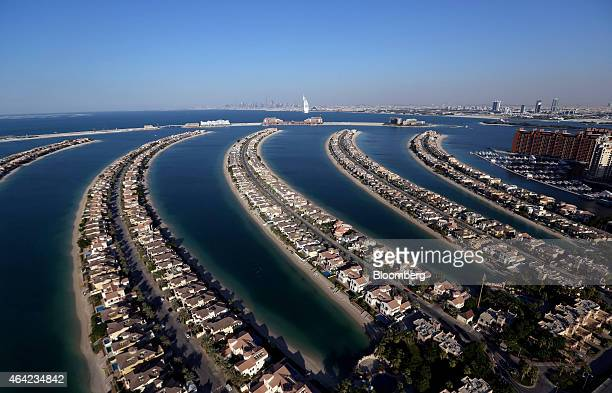 Luxury residential villas cover the fronds of the Jumeirah Palm island resort in this aerial view of Dubai United Arab Emirates on Tuesday Nov 11...