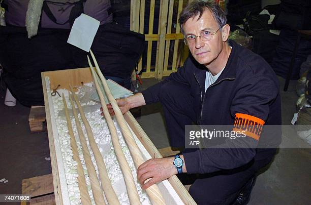 A handout photo from French Customs taken 24 April 2007 shows five narwhal tuskd seized by Customs at the end of March at Lyon SaintExupery airport...