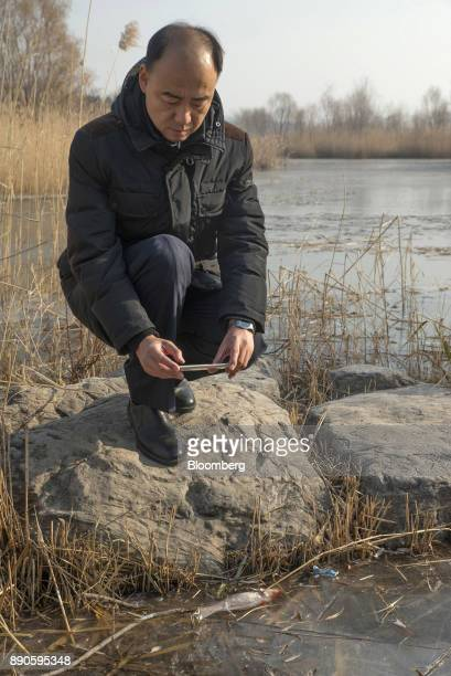 Ma Jun founder of the Institute of Public Environmental Affairs takes a photograph of a dead fish in a stream while posing for a photograph in a park...