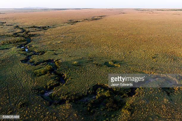 An aerial view of the Mara River winding its way across the vast short grass savannah plain.