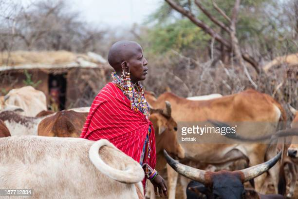 Maasai woman with cattle in village.