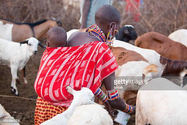 Maasai woman with child on back milking goat.