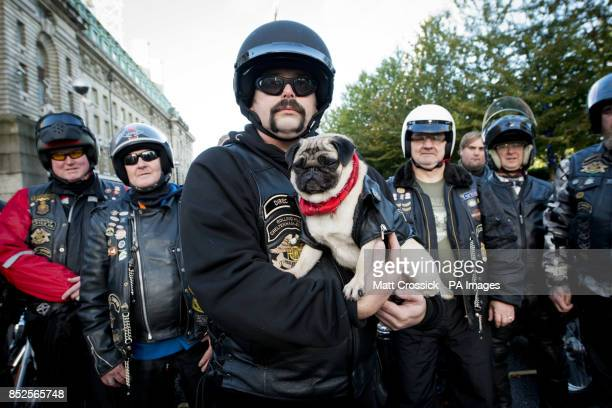 Mabel the pug from Three's recent advertising campaign with biker Gareth Swanson and the rest of Three's fleet of LiMo bikes before they set off...