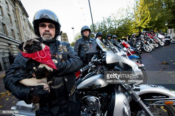 Mabel the pug from Three's recent advertising campaign with biker Steve Walters and the rest of Three's fleet of LiMo bikes before they set off...