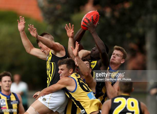 Mabior Chol of the Richmond Tigers takes a mark during the round two VFL match between Sandringham and Richmond at Trevor Barker Beach Oval on April...