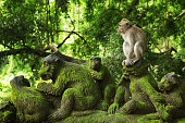 The Ubud Monkey Forest is a nature reserve and Hindu temple complex in Ubud, Bali, Indonesia. Its official name is the Sacred Monkey Forest Sanctuary.