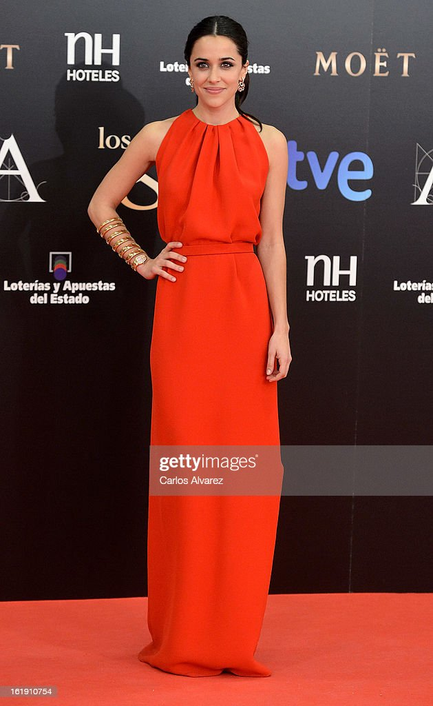 Macarena Garcia attends Goya Cinema Awards 2013 at Centro de Congresos Principe Felipe on February 17, 2013 in Madrid, Spain.