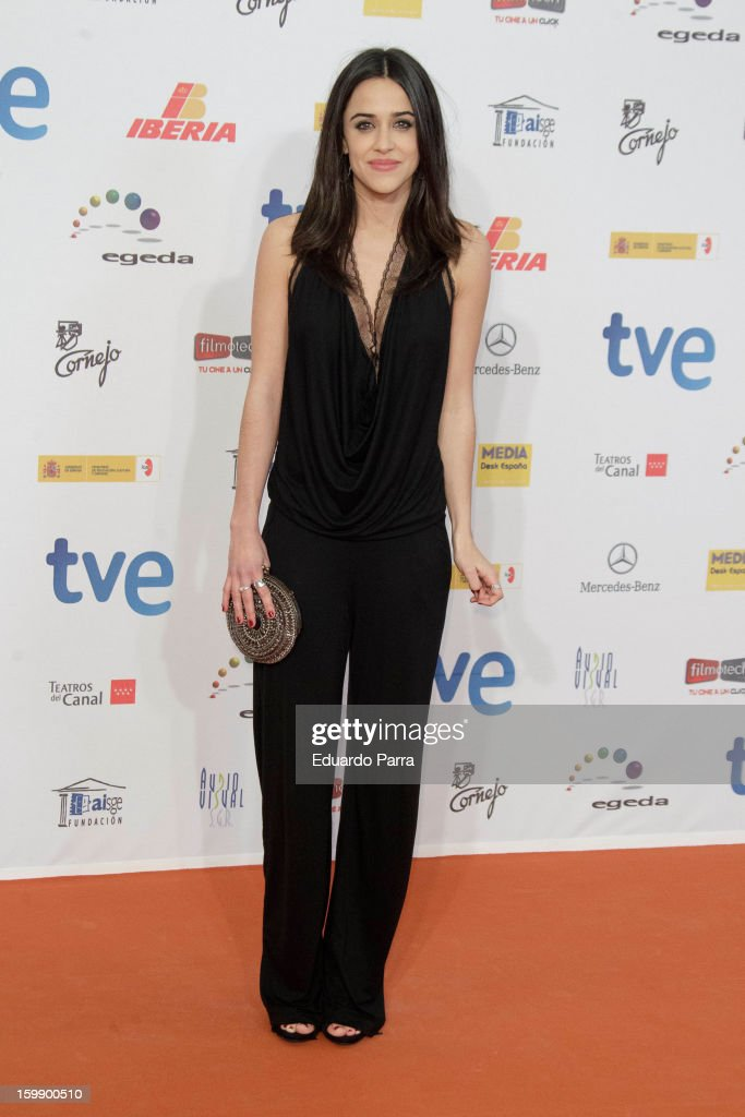 Macarena Garcia attends Jose Maria Forque awards photocall at Canal theatre on January 22, 2013 in Madrid, Spain.