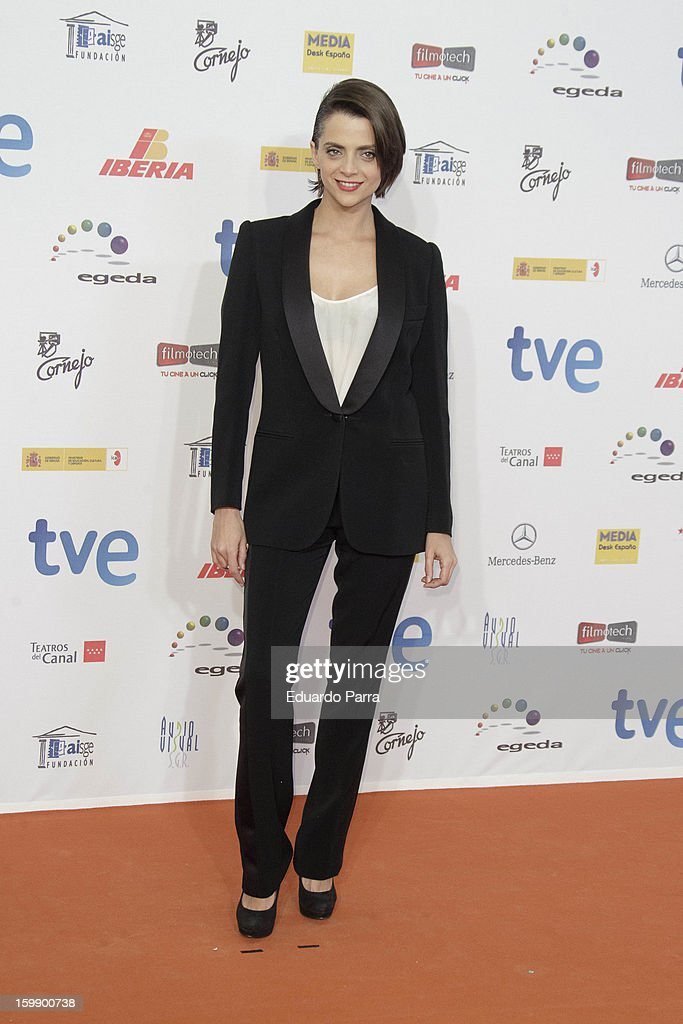 Macarena Gomez attends Jose Maria Forque awards photocall at Canal theatre on January 22, 2013 in Madrid, Spain.
