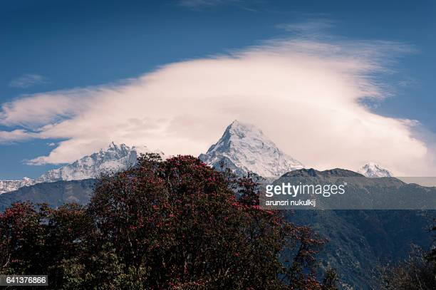 Machapuchare mountain (Fishtail) at sunrise