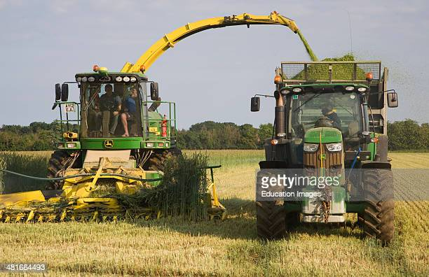 Machinery harvesting a crop of rye to be used as biofuel for electricity generation Shottisham Suffolk England