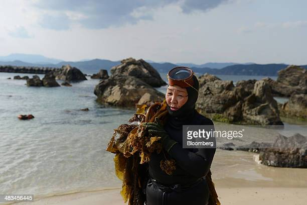 Machiyo Yamashita a female seadiver known as ama carries her haul of wakame seaweed onto the shore in Shima Mie Prefecture Japan on Sunday March 9...